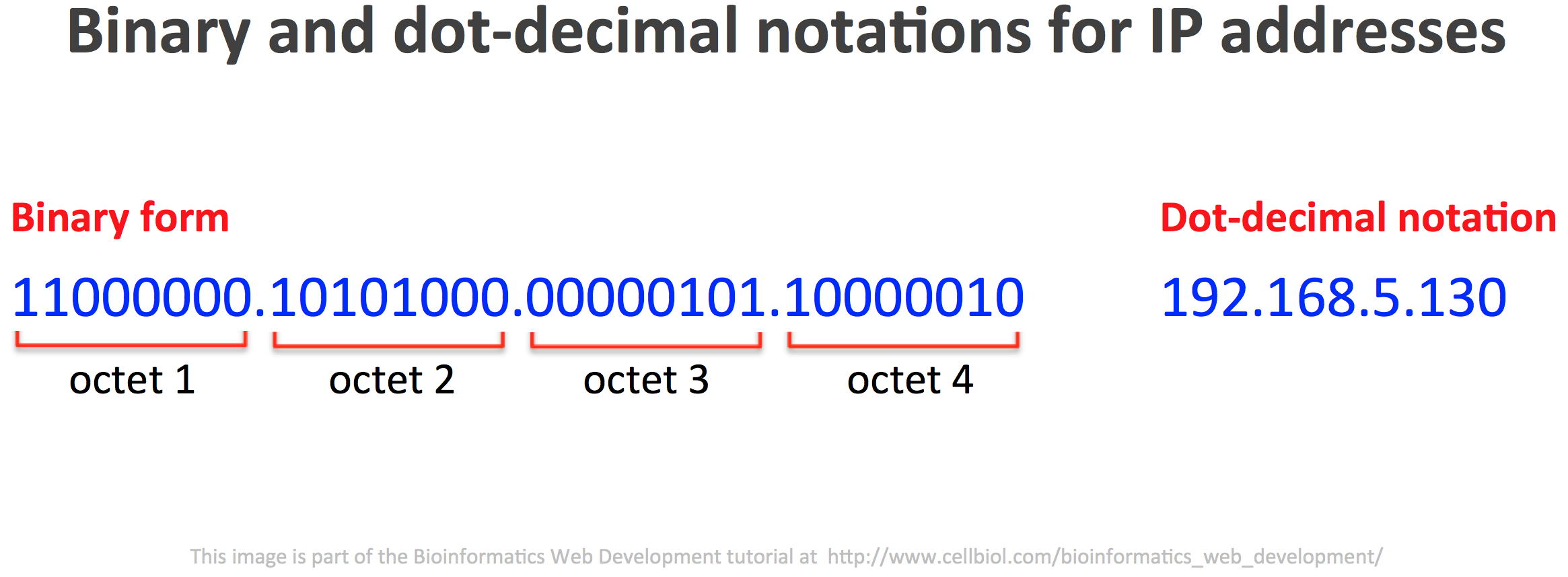 IPv4 IP addresses are 32 bits numbers. In this figure the subdivision in 8 bytes (octects) of an IP address is shown, together with the translation in dot-decimal notation (the one that is usually visible and used for handling IP addresses)