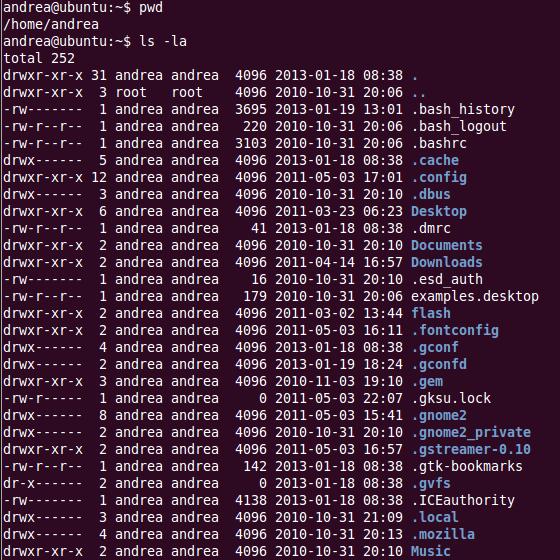 Listing files with ls -la