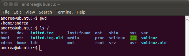 Listing the contents of the Root directory with the ls command