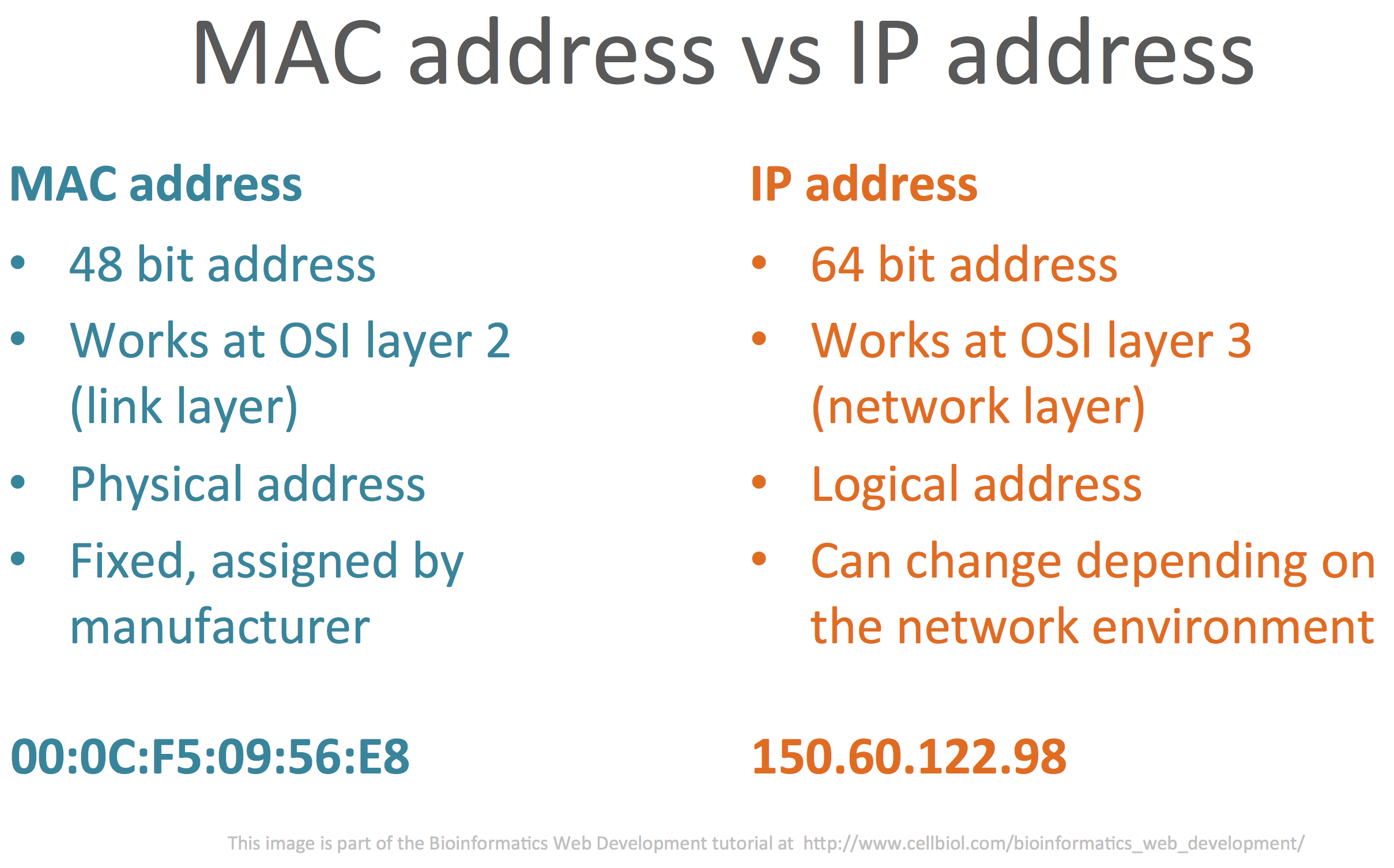1 ip family of internet protocols