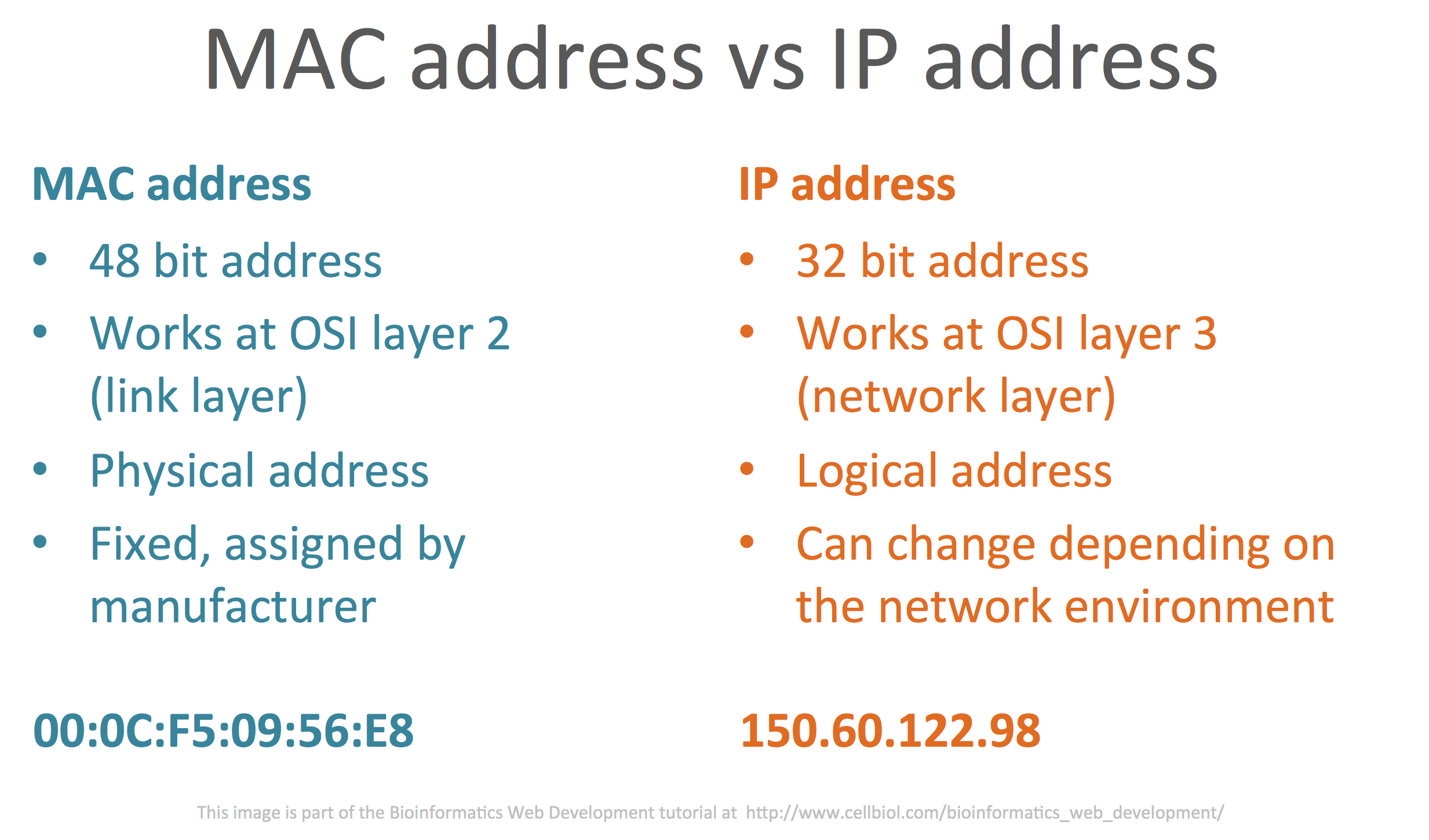 Comparison between MAC addresses and IP addresses