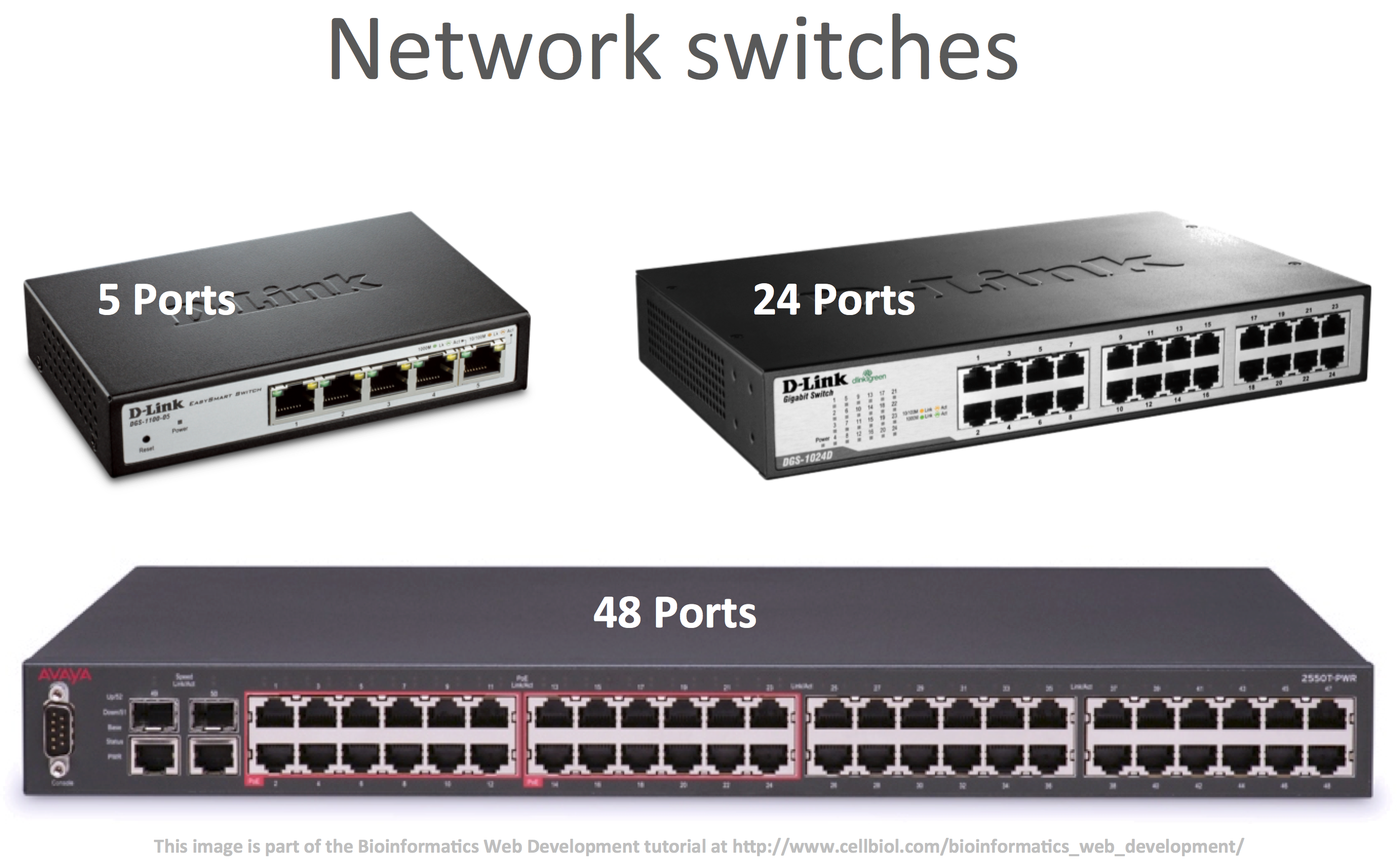 Network switches with varying number of ethernet ports