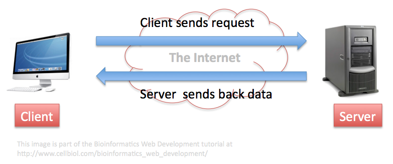 The client-server paradigm