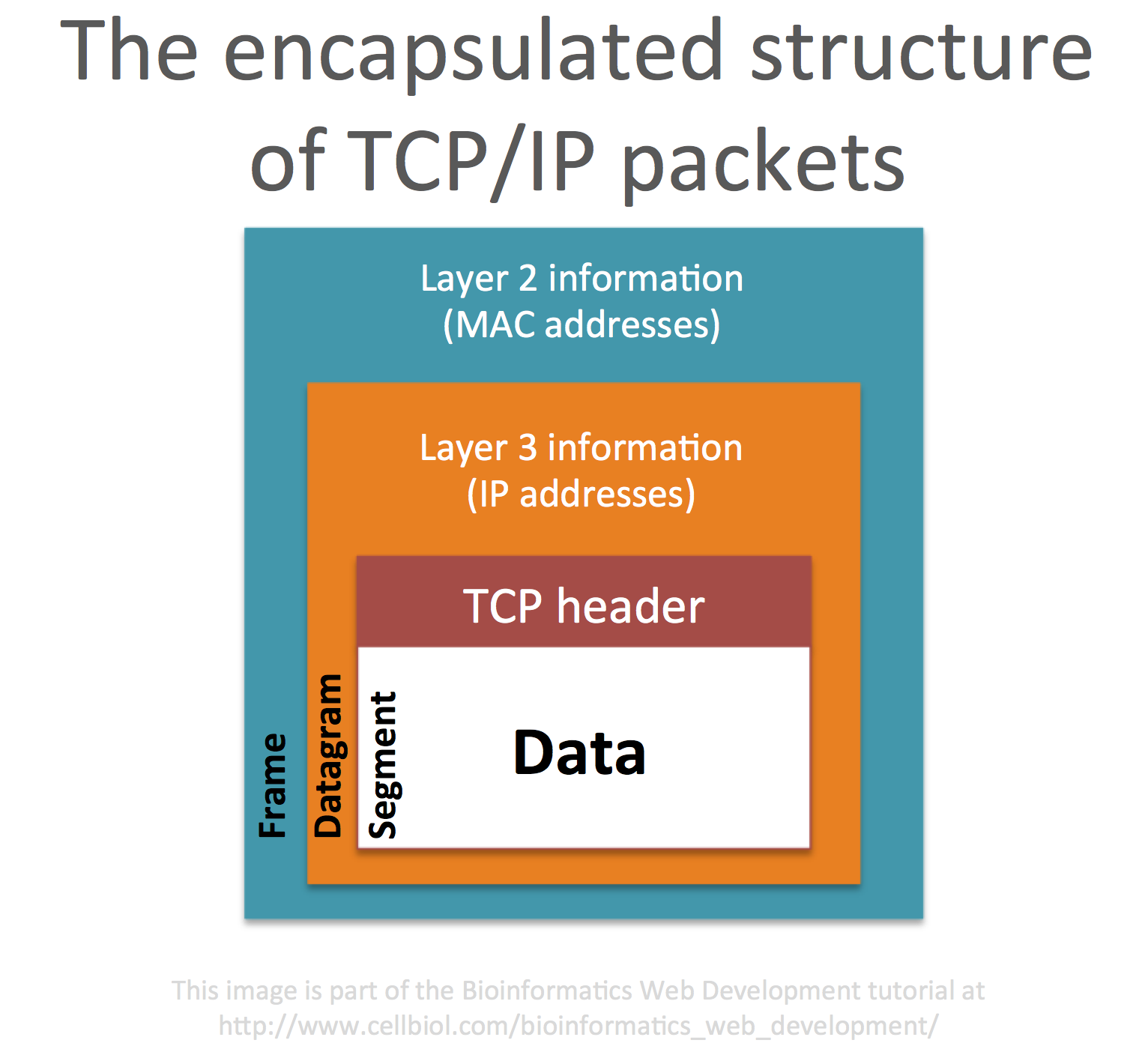 The encapsulated structure of TCP/IP packets. In OSI layer 4 data is fragmented into segments. In OSI layer 3 each segment is encapsulated in a datagram with information on source and destination IP. In OSI layer 2 the packet is further encapsulated in a frame that contains the source and destination MAC addresses. If the destination of the packet resides outside of the local network, the destination MAC address is the one of the gateway (the router).