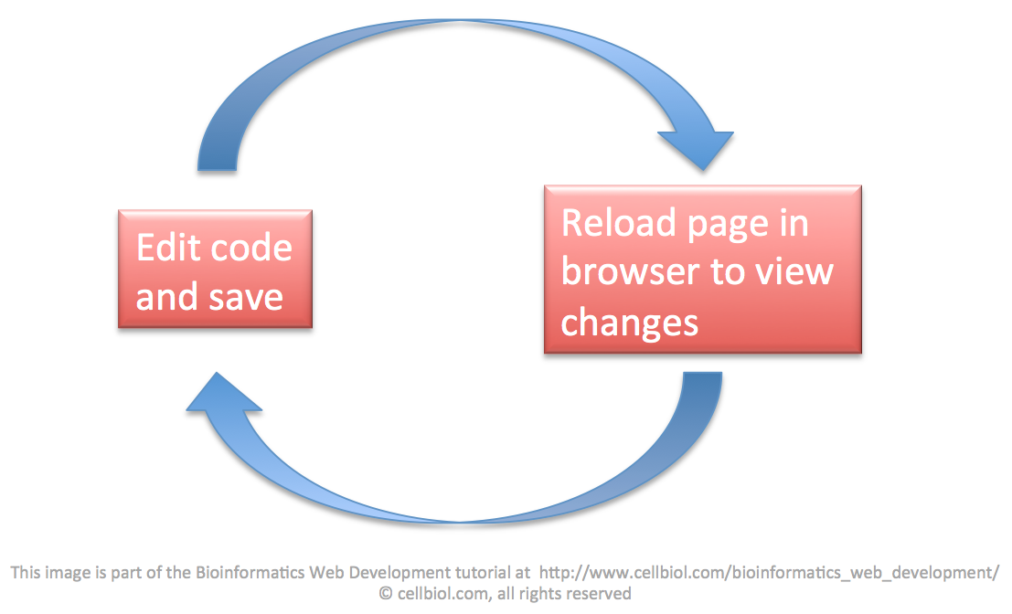The Web Development Cycle