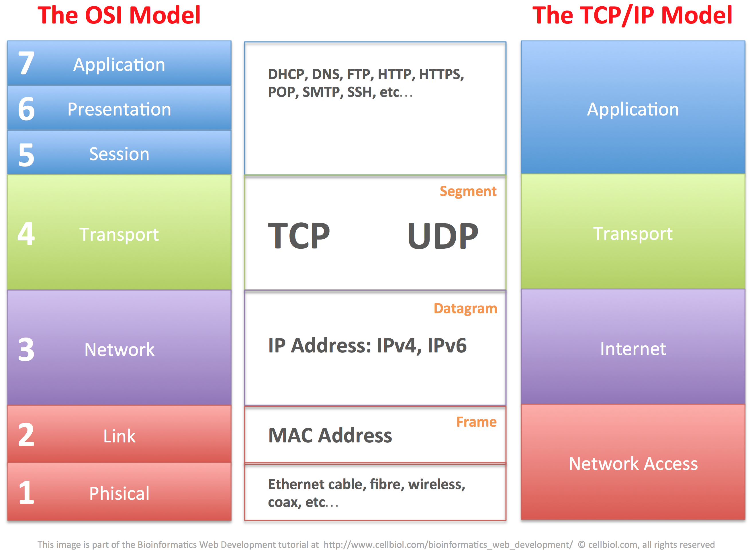 Comparison between the OSI and the TCP/IP models that show how the OSI layers relate to the TCP/IP layers.