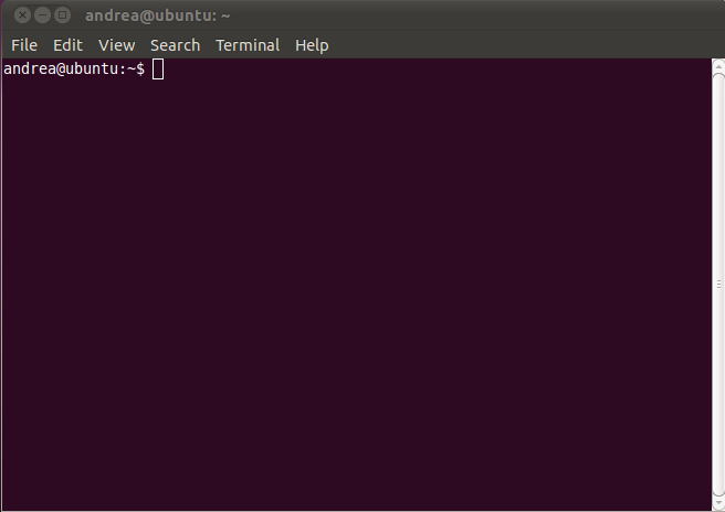 Linux Terminal to access the Shell