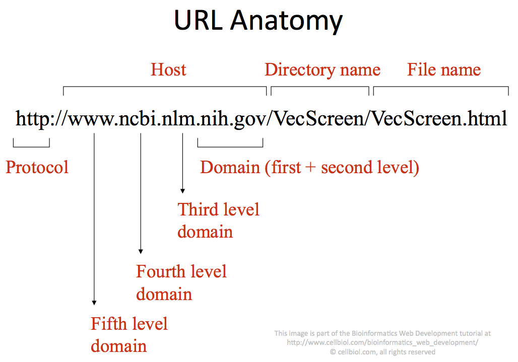 3-1: Hosts, Domains and URLs – Bioinformatics Web Development