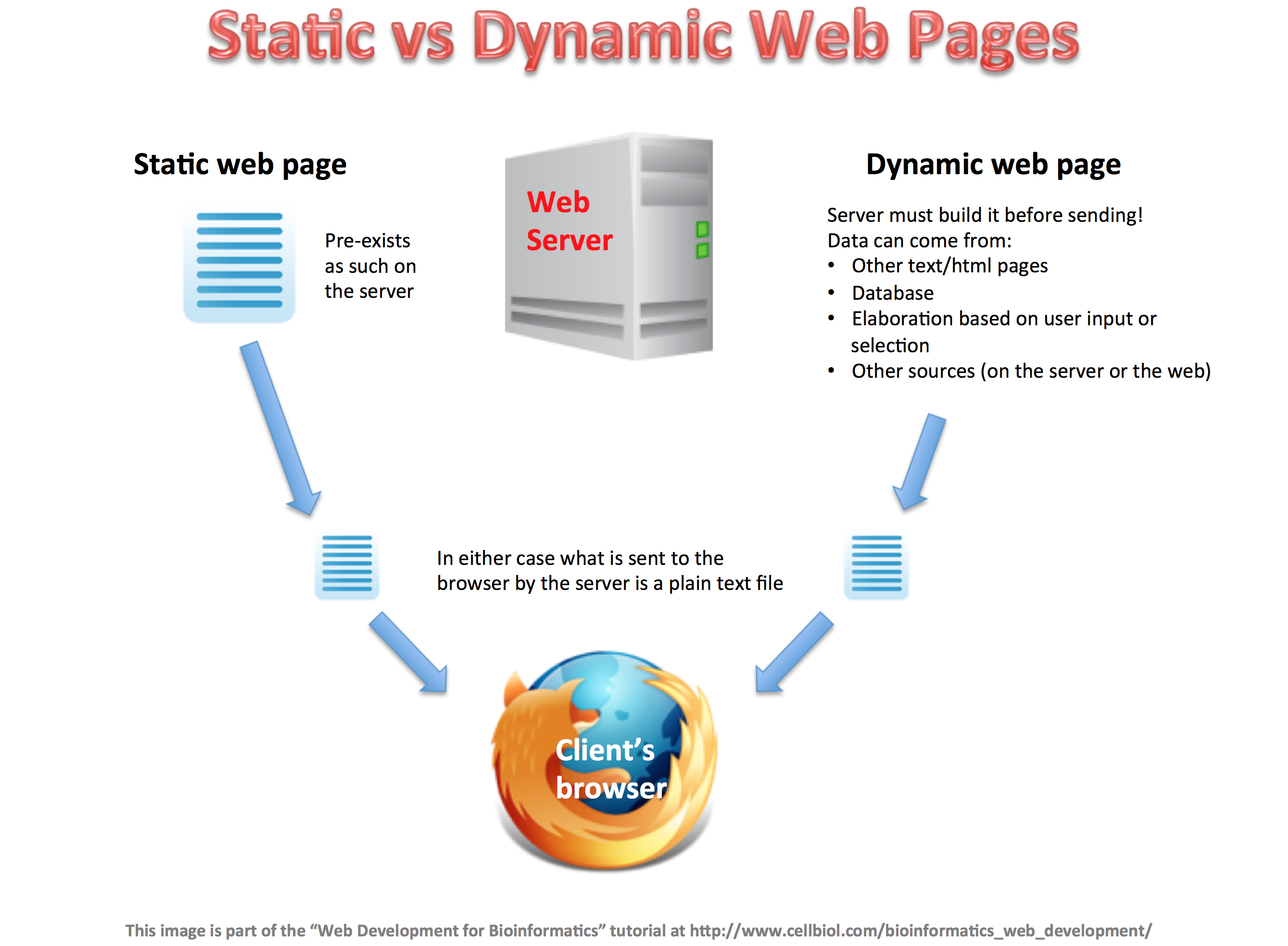 Static versus dynamic web pages
