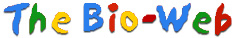 The Bio-Web logo